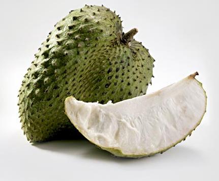 Plantation d'arbre fruitier  Graviola-bio-corossol-antioxydant-naturel-superfruit-puissant-anti-cancer-jus-proprietes-vertus-8
